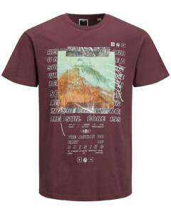 Jack & Jones t-shirt s/s